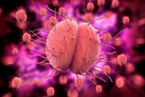 Bệnh lậu là gì? Nguyên nhân và cách phòng tránh bệnh lậu hiệu quả